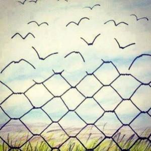 Libertà-raggiunta-con-la-psicoterapia