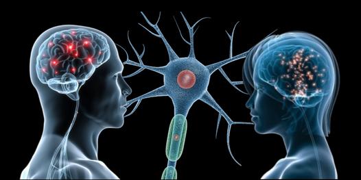 Lo strano potere umano che tutti abbiamo di leggere nella mentearcangela derosa arcangela derosa - Neuroni a specchio ...